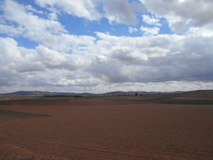 Vista de La Mancha desde el cerro de los molinos