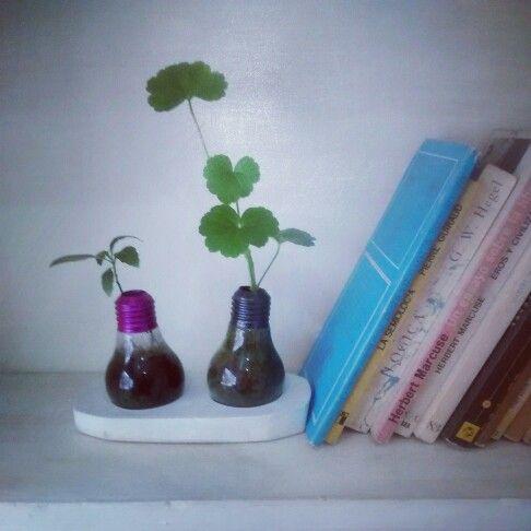 @Bokok entre libros B