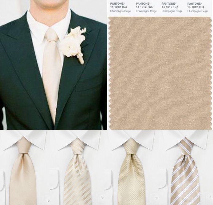 These ties are gorgeous! Love this champagne color.