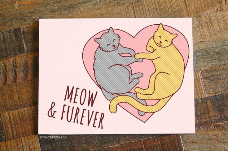 """FREE SHIPPING ON US ORDERS! """"Meow & Forever"""" This adorable cat pun card is perfect for your husband, wife, boyfriend, girlfriend or significant other on anniversaries, valentine's day, birthdays, or j"""