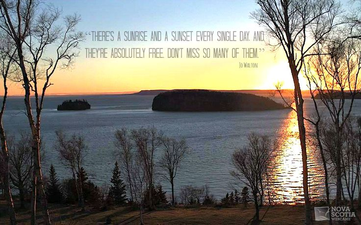 """There's a sunrise and a sunset every single day, and they're absolutely free. Don't miss so many of them."" Jo Walton  http://www.novascotiawebcams.com/en/webcams/rockcliffe-by-the-sea/  #Quote #NovaScotia #RockcliffeByTheSea #Sunset"