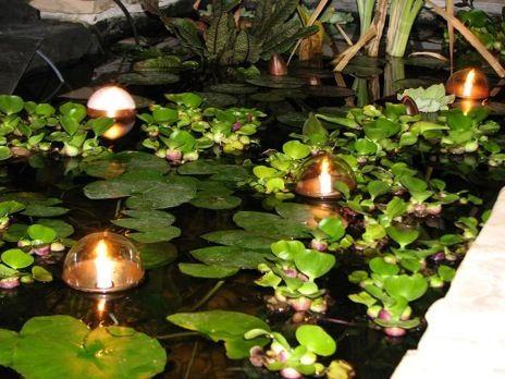 17 Best Images About Pond Lighting On Pinterest Backyard For Garden Pond  Lights