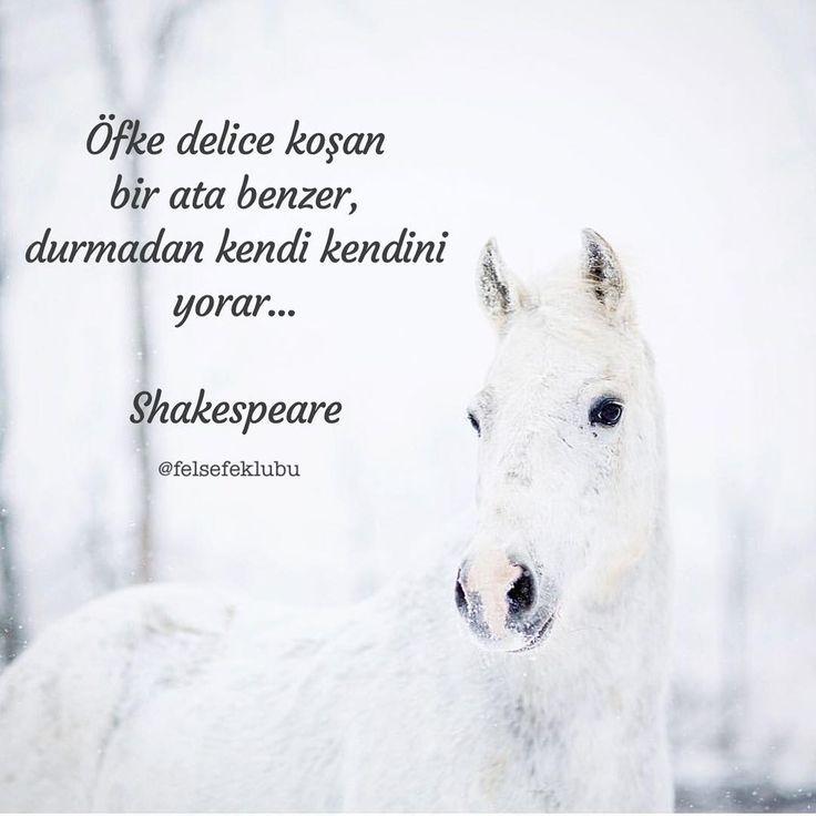 Öfke delice koşan bir ata benzer, durmadan kendi kendini yorar...   - William Shakespeare  #sözler #anlamlısözler #güzelsözler #manalısözler #özlüsözler #alıntı #alıntılar #alıntıdır #alıntısözler #şiir #edebiyat