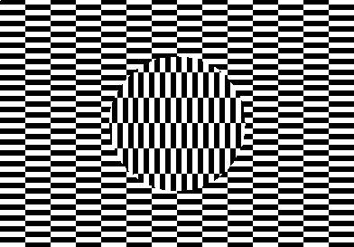 illusion-doptique-noir-et-blanc.gif 392×273 pixels  Auf petitesexperiences.com http://www.pinterest.com/pplaceman/cours/