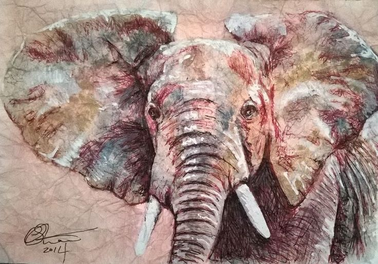 Lovely Elephant by chewartwork  A lovely young Elephant. My original art was done with watercolor and biro on crinkled paper.