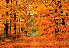 autumn desktop wallpapers 4ha