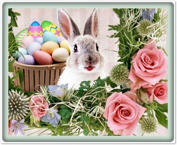 húsvét, képek, nyuszi, képeslapok, versek, idézetek, tojás,