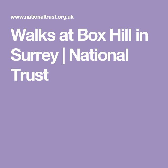 Walks at Box Hill in Surrey | National Trust
