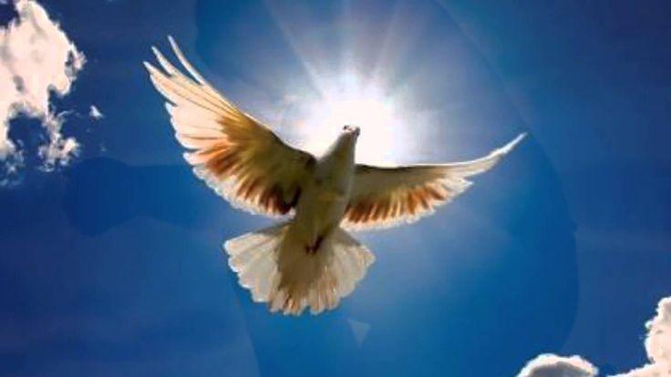 Marathi Christian Songs - Mala Buddhi De Prabhi - Heart Touching Song by...