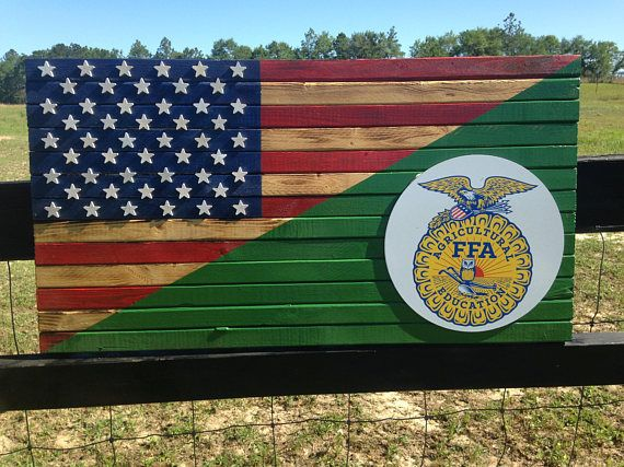 American FFA Flag.  LOVE this!