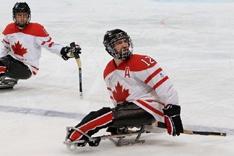 IPC Sled Hockey Page
