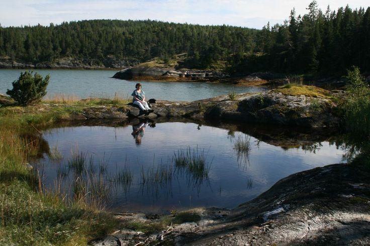 Her er et bilde fra Olavskilden på Letnes på Inderøya. Foto: Audun Åby