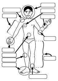 lichaamsdelen benoemen werkblad - Google zoeken
