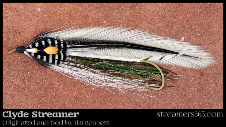 76 Best Flies Amp Fly Tying Images On Pinterest Fly Tying
