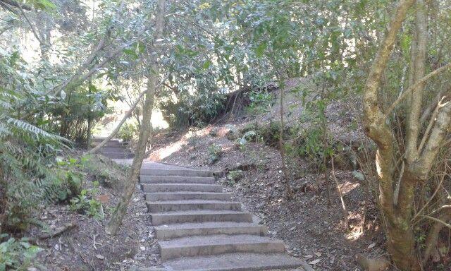 Parque Jorge Alessandri