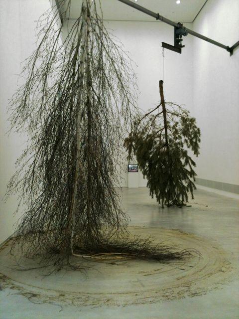 Michael Sailstorfer   Forst,  2012, Berlinische Galerie, Vattenfall Contemporary