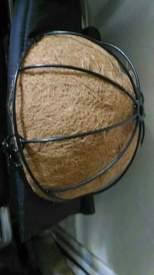 Tienda Online Forjado de coco medio círculo maceta macetas colgantes rota ventana macetas decorativas de pared de hierro jardín planta Planter cesta de la flor | Aliexpress móvil