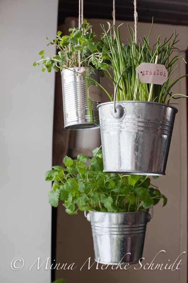 92 Best Kitchen Garden Images On Pinterest
