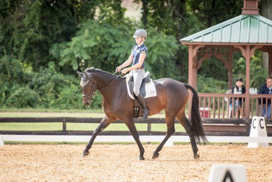 USEA, Eventing Tests Introduce Riders to the Sport | United States Eventing Association, Inc. (R) US National Combined Training, Horse Trials: Dressage, Cross Country, Show Jumping
