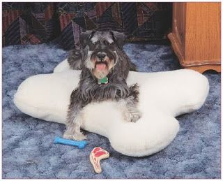 BONE DOG PILLOW - FREE PATTERN