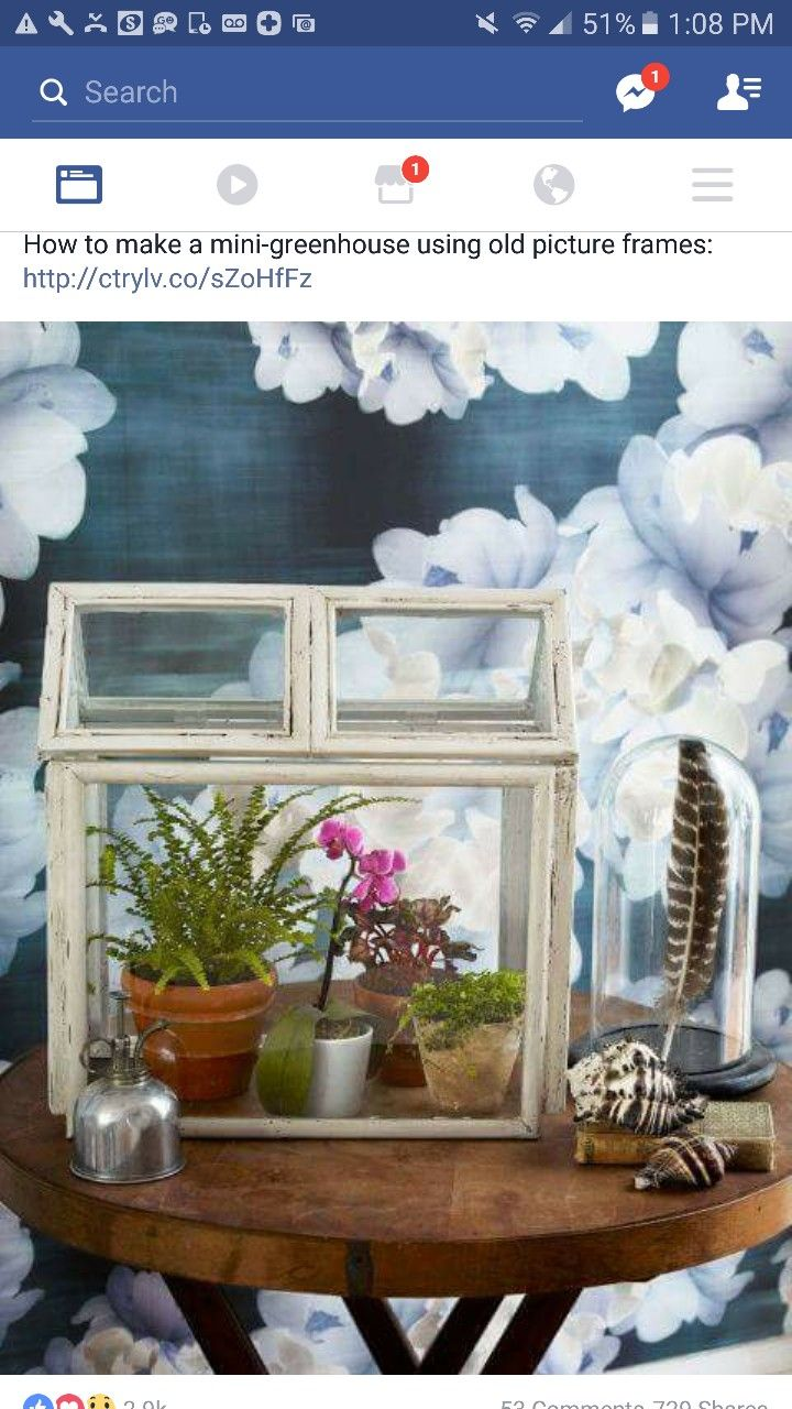 How To: Repurpose Old Picture Frames to Create a Charming Miniature  Terrarium