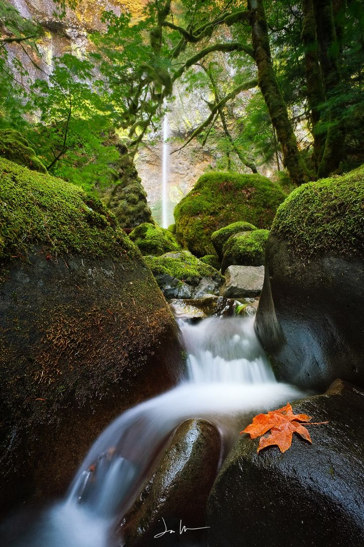 Fall Downstream by Justin Walker on 500px