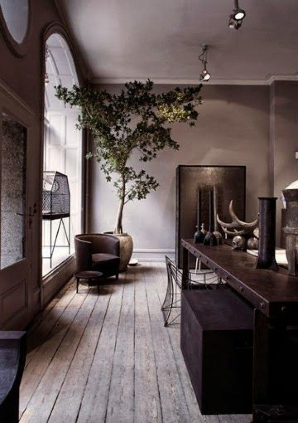 mooie stoere keuken met een groene boom als blikvanger