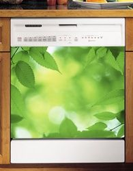 Oooo....I really like this one! Magnetic Dishwasher panels! Zazzy!