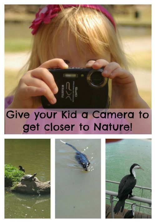 Give your Kids a Camera to get Closer to Nature | Wildlife Fun 4 Kids