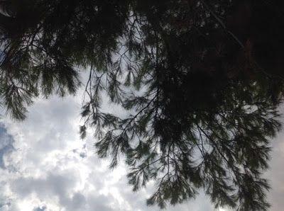 Kate Tzoe: Πώς πέρασα φέτος το καλοκαίρι / διακοπές 2015
