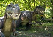 Dinosaurs Alive at Carowinds - These dinosaur animatronics are based on the most up to date paleontological research.There's an additional $5.00 fee for this exhibit. Reg admission to Carowinds is about $37.50