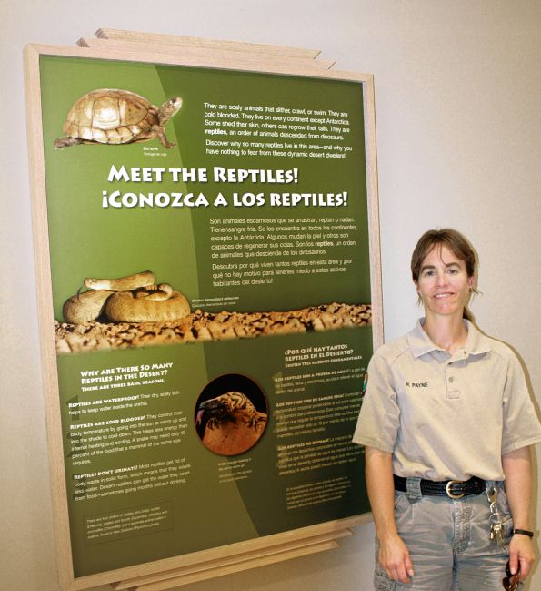 Reptiles moving up at Living Desert Zoo