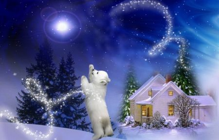103 best wallpapers images on pinterest beautiful - Christmas nature wallpaper ...