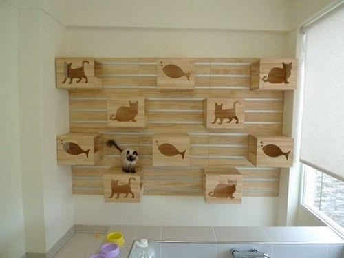 katzen bibliothek cat climbing wallcat roomcat furniturefurniture designfurniture ideascat