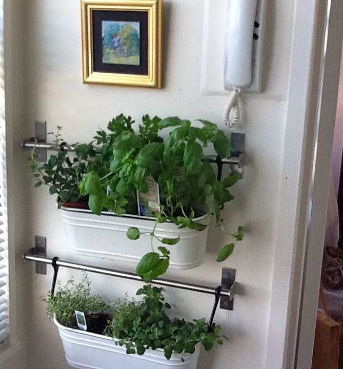 11 best images about shoe planter project on pinterest for Kitchen herb garden