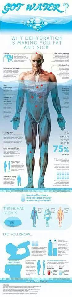 Why is water so good to have and help keep away the fat cells?... This should help you understand!!