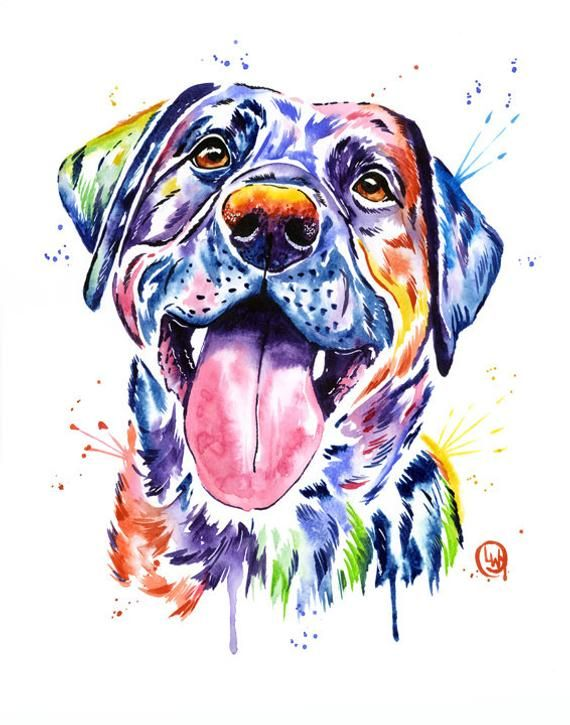 Black Lab Print Labrador Retriever Colorful Watercolor Painting