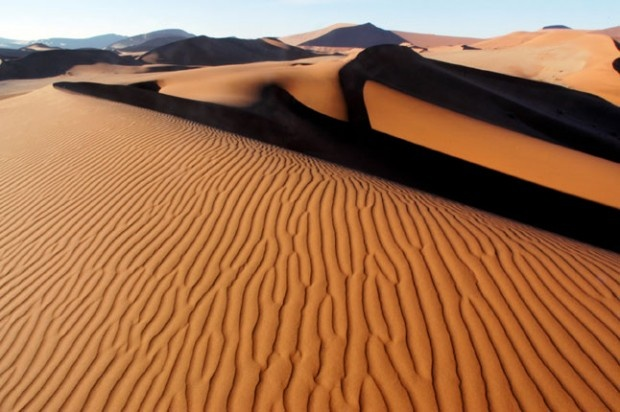 Deserto del Kalahari, culla dell'umanità