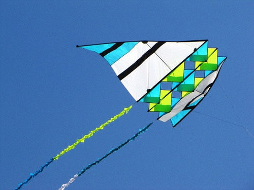 how to build a delta conyne kite