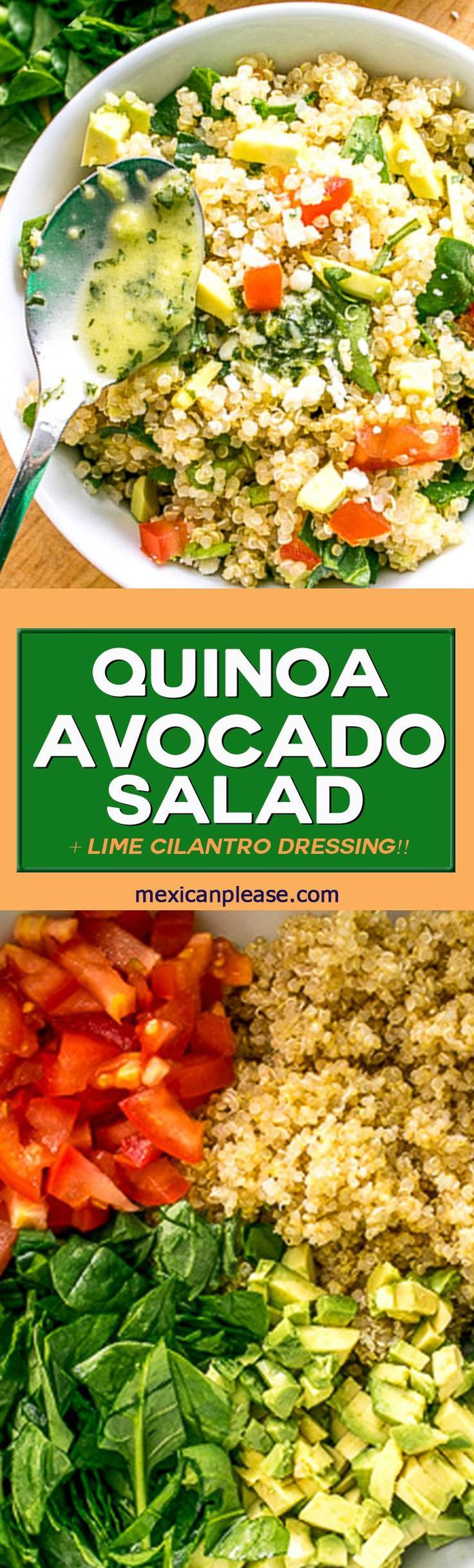 This Quinoa Avocado Salad is ridiculously healthy and tastes great on its own. Add in some Lime Cilantro Dressing and it becomes a keeper!!  Buen Provecho. #quinoa mexicanplease.com