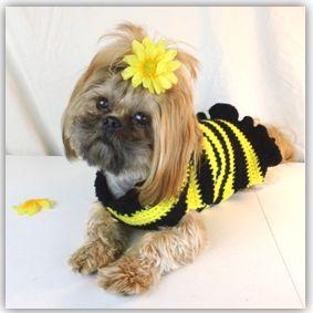 Cute Striped Dog Sweater: free pattern