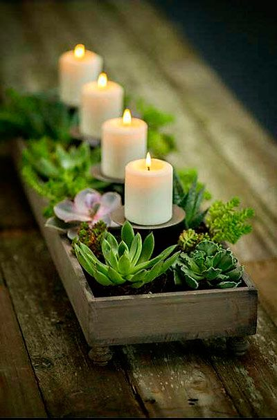 centro de mesa con plantas y velas, ideal para decoración romántica   #boda #wedding #light #illumination #decoration #decoracion #diy #original #ideas #lights #luces #vintage #candles #lanters #treas #exterior #garlands #centerpiece #plants