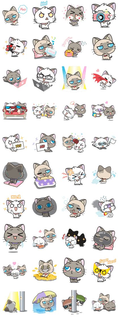 """Hoshi & Luna Diary"" the 4th series with new friend ""Sora"". All cat lovers don't miss. Send it to your friends now!."