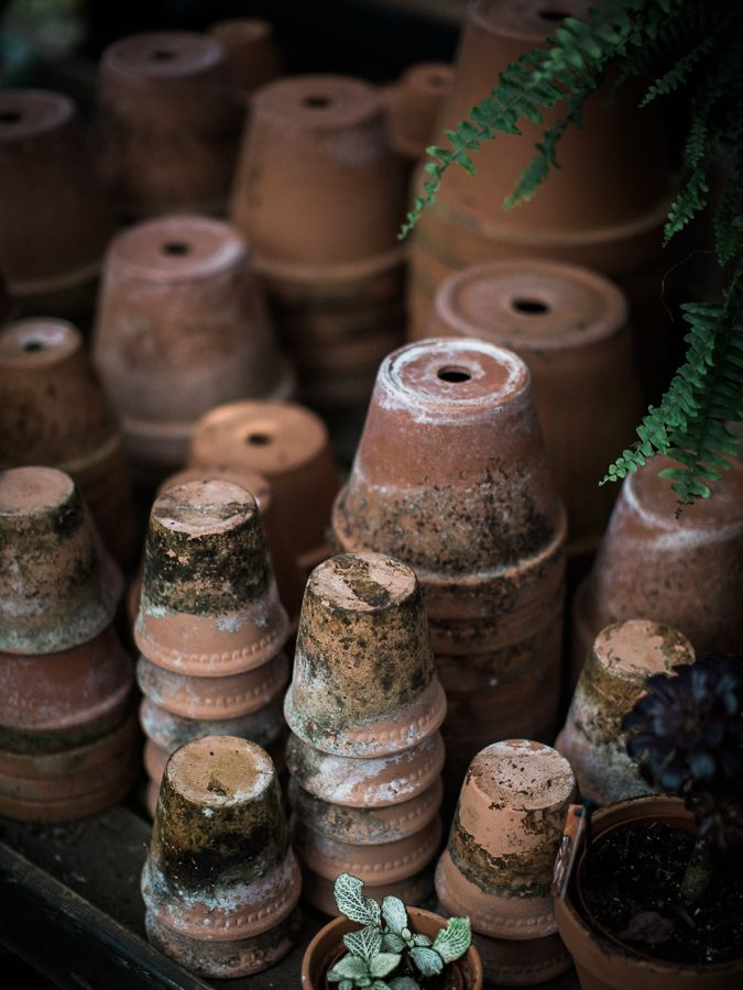 Petersham Nurseries - a taste of the countryside in London | overgrown, moss-covered plant pots // Photo by @chikaeoh