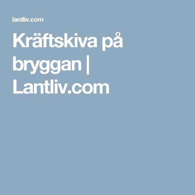 Kräftskiva på bryggan | Lantliv.com