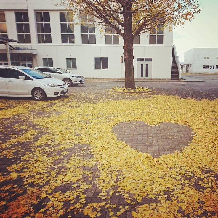 Уличное искусство из опавших листьев в Японии (Интернет-журнал ETODAY)