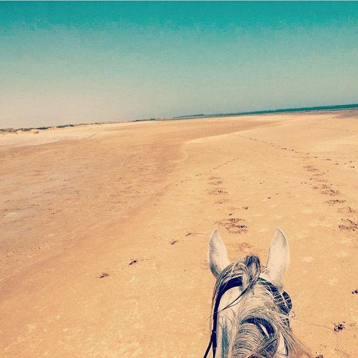 Riding a horse on the beach....