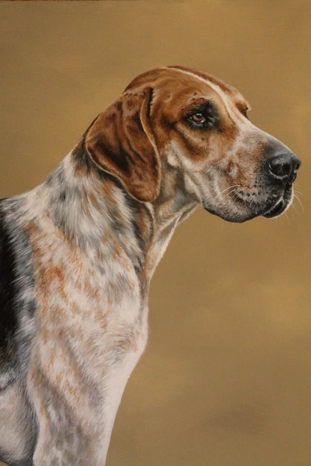 Canvas Artwork Foxhound Painting | Fox Hunting In 2019 | Animal Paintings