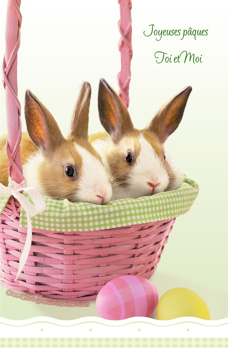 Carte joyeuses paques gratuite a imprimer lapin - Photo de lapin a imprimer ...