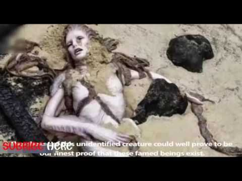 7 Unidentified Creatures | Are Monsters Real? Strange Sea Creatures